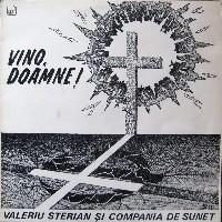Vali Sterian-coperta disc Vino-Doamne