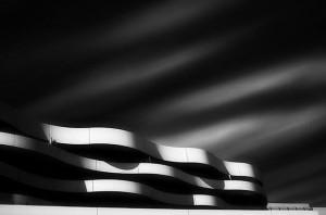 2-Mihai Florea Australia-Premiu foto alb-negru