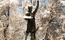 540 ani de la biruinta in batalia d ela vaslui