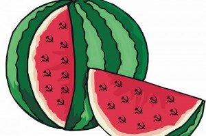 Harbuzul PLDM cu secere si ciocane comuniste