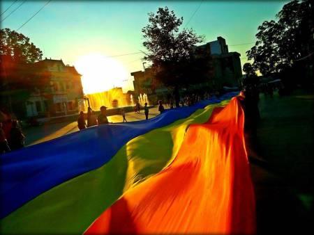 Tricolor in amurg
