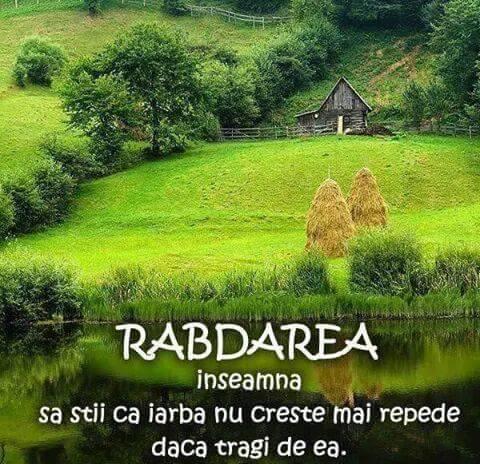 07-06-2015-Rabdarea-foto simbol-iarba-sat-riu