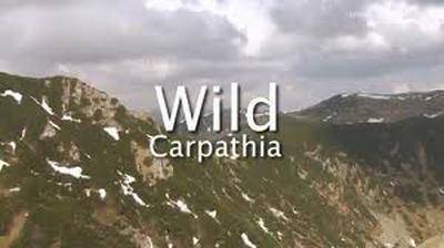 Filmul Wild-Carpathia continua cu episod 4-400px