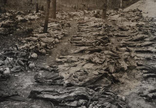 Katyn 1940-groapa comuna ofiteri polonezi 2-