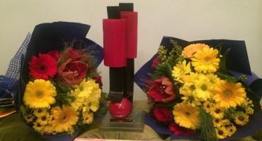 TVR-Trofeul Gala Premilor 2-12-12-2015-500px