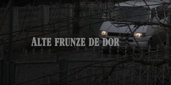 film-alte-frunze-de-dor-de-victor-pietraru-captura-video-500px