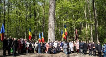 Invierea in Codrii Cosminului nordul Bucovinei 1-16 apr 2017-500px